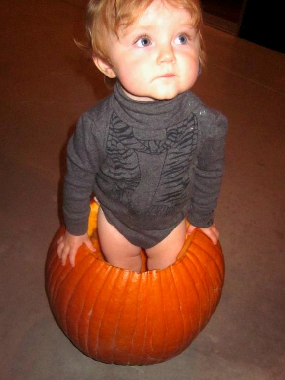 """""""baby in pumpkin"""", """"baby halloween"""""""